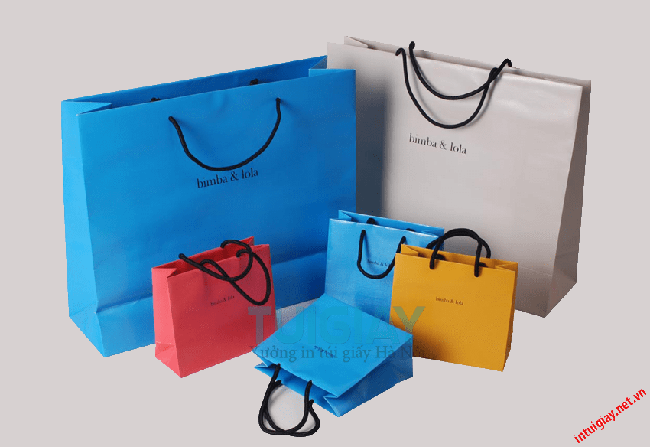 Biến hóa in túi giấy đa dạng với mọi lĩnh vực đời sống